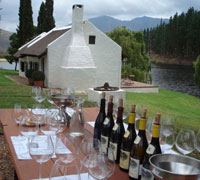Wine Tasting in Hermanus