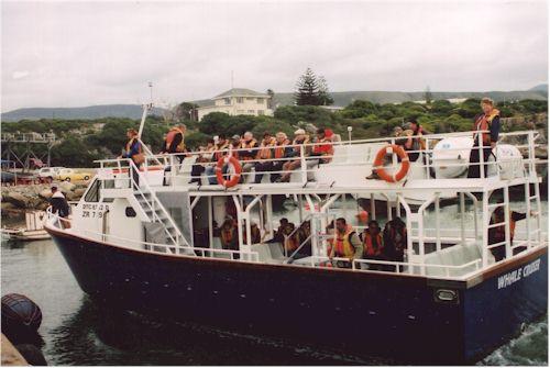 Hermanus Whale Cruises Boat