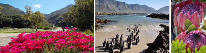 Hermanus to Kleinmond and Betty's Bay