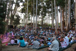 Paul Cluver Concert in the forest
